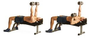 alternatives to bench press