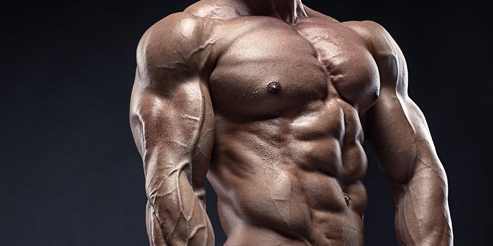 bodybuilder 101