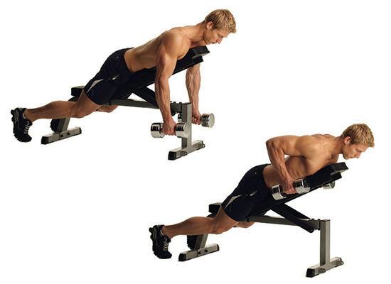 back supported rows
