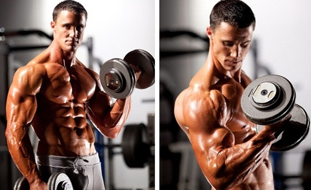 barbell or dumbbell curls