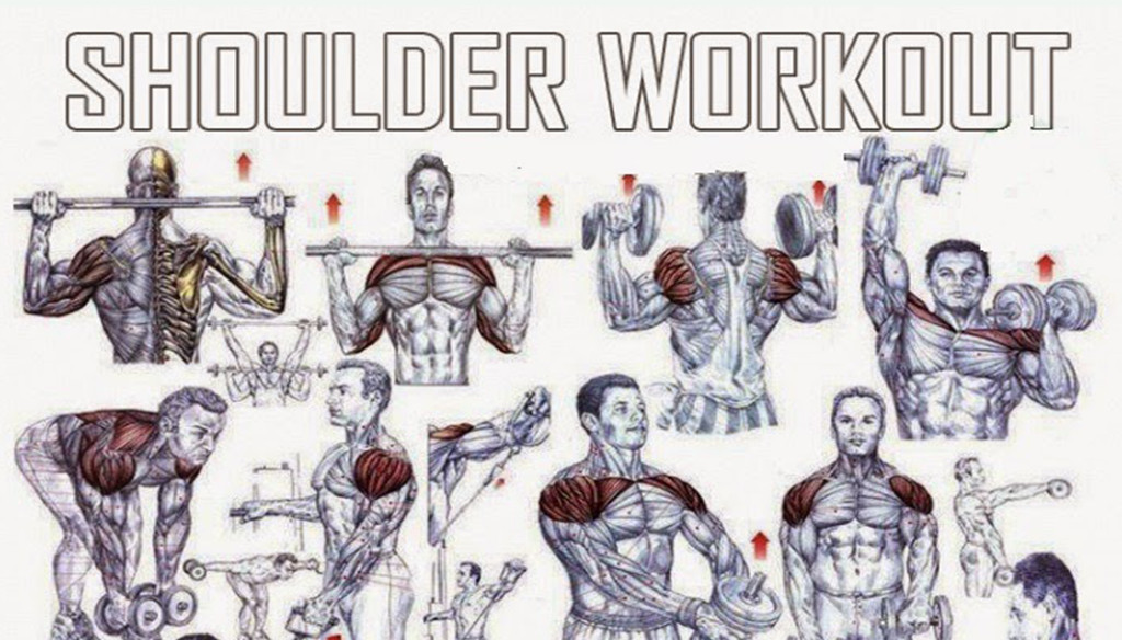basic shoulder workout