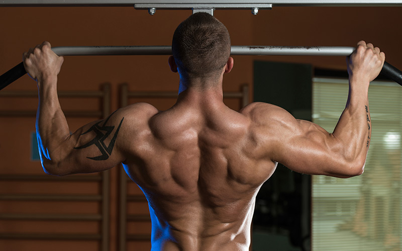 chin ups for chest