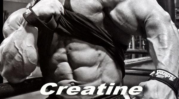 creatine on non workout days