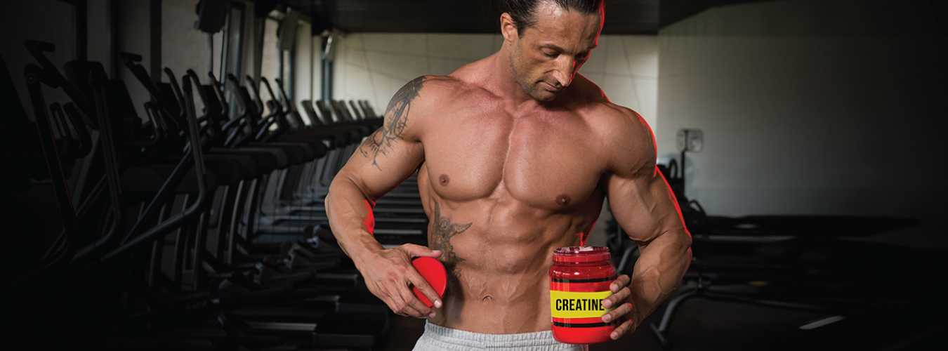 creatine use for muscle building