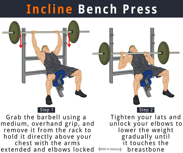 High Incline Bench Press Barbell And Dumbbell Upper Chest Exercises