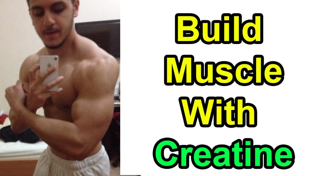 muscle building creatine