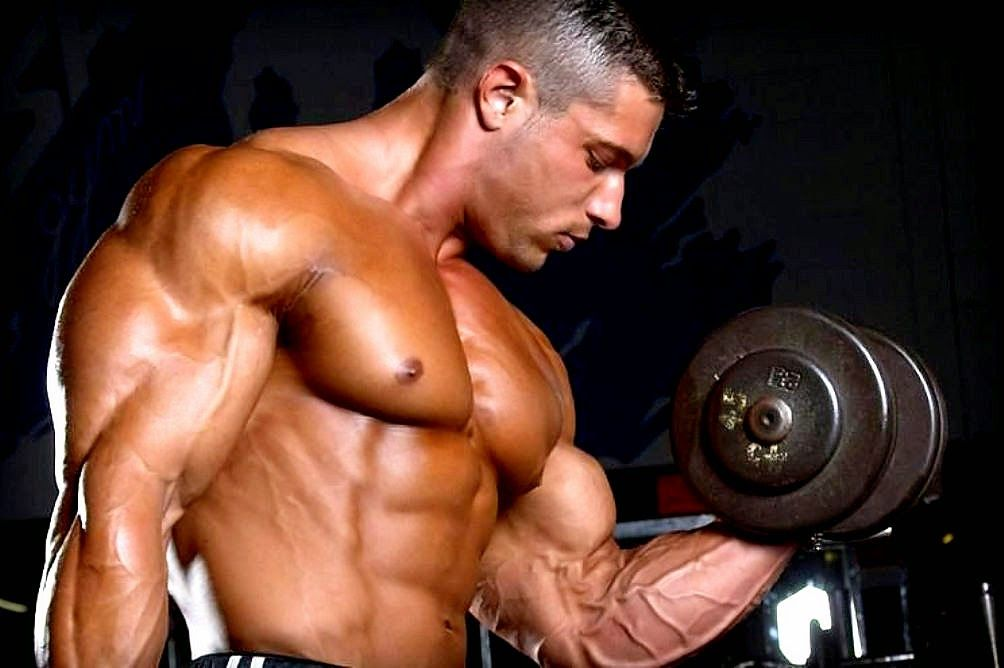 muscle growth blogspot