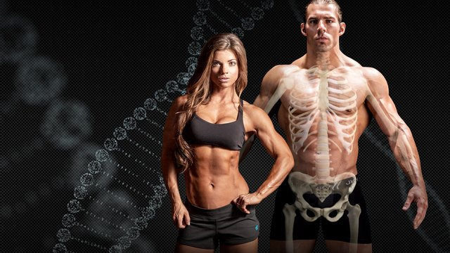 the science of bodybuilding