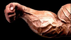 workout for forearms and wrists