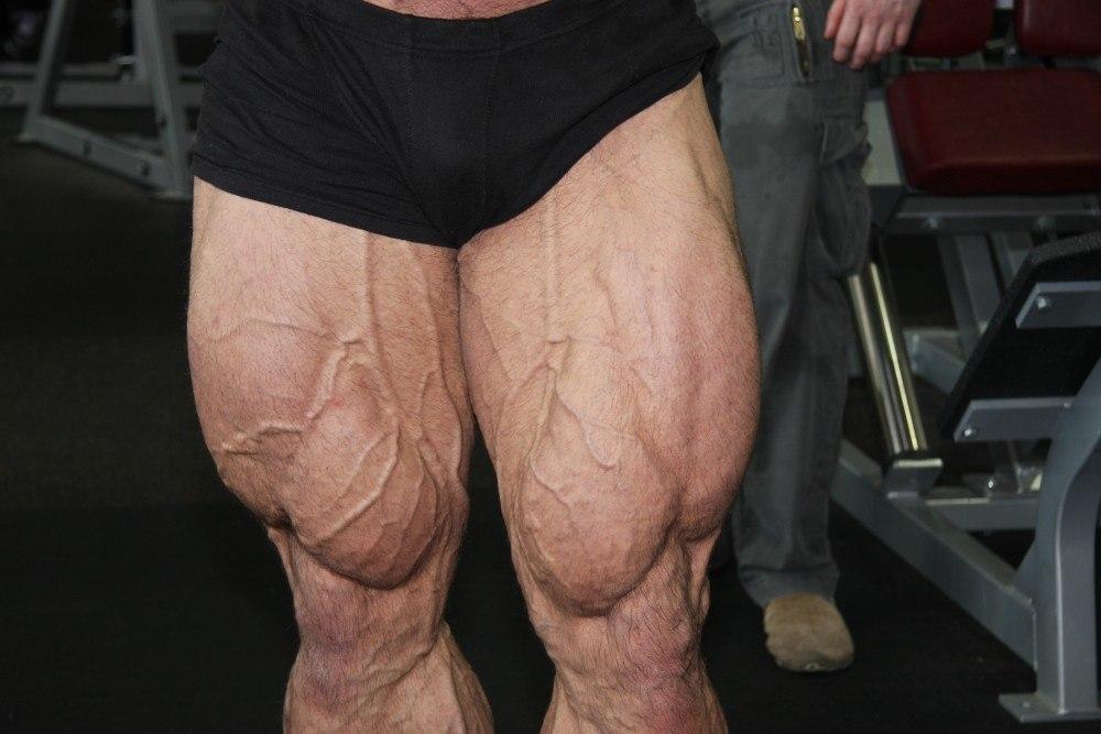 legs muscular
