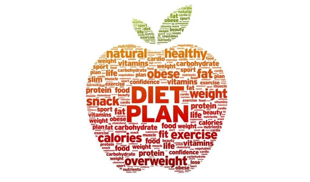 Diet plan components